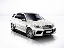 Thermo Top V (дизель) для Mercedes-Benz ML/GL-Class (BR166)